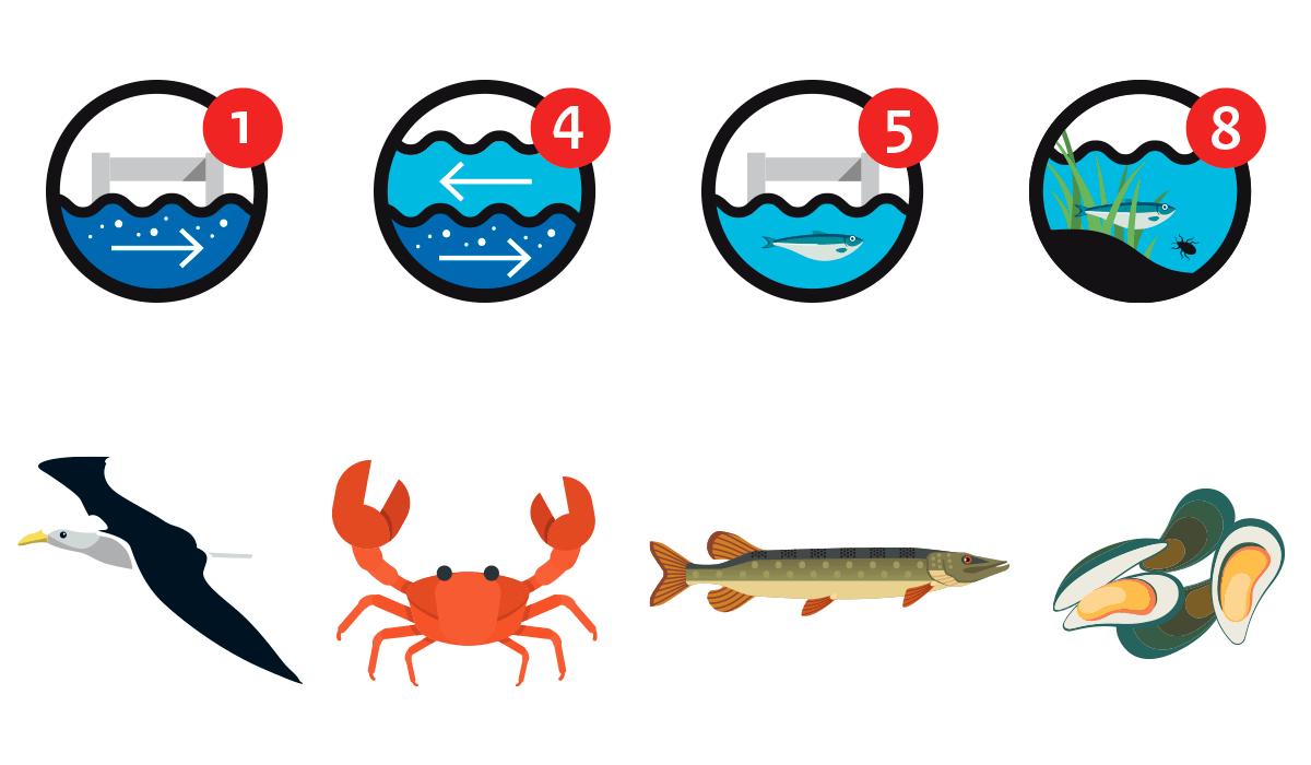 infographics_rijkswaterstaat_09